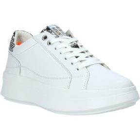 Xαμηλά Sneakers Impronte IL01551A