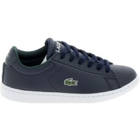 Xαμηλά Sneakers Lacoste Carnaby C Marine Blanc